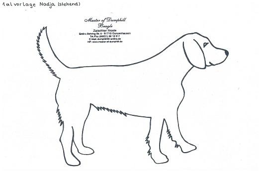 Master Of Dumphill De Beagletipp S Info S